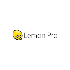 Obsługa informatyczna firm Warszawa - LEMON PRO
